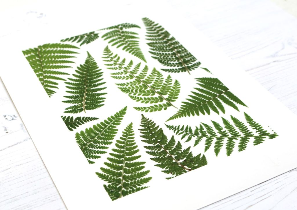 Leaf Wall Art by Silver and Birch
